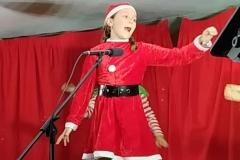 Festivales-Navidad